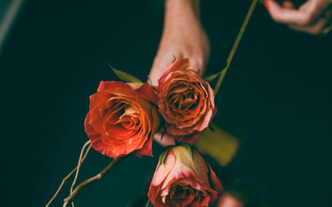 verissima natural skin care | rose-oil-aromatherapy